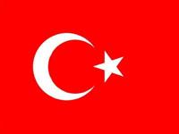 Turkey: pro-secularism demonstration organized Thursday