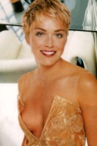 Sharon Stone to raise  million for AIDS research