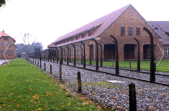 Putin not going to Poland for commemorative Auschwitz ceremony. Poland marks liberation of Auschwitz