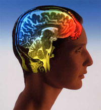 New Brain Scan Detects Autism in Adults in 15 Minutes