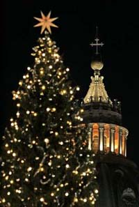 Vatican Christmas tree - tallest ever - arrives from southern Italy