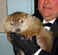 Groundhog does not see his shadow, predicts an early spring ahead