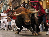 Women want cow-runs for equality in Spain's San Fermin bull festival