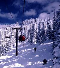 Ski federation undergoes various disciplinary measures for serious failure