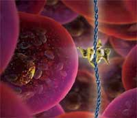More research needed to identify hazards of nanotechnologies