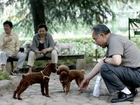 Shanghai establishes one dog only policy. 44387.jpeg