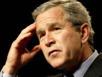Bush to help property owners wasted by wildfires