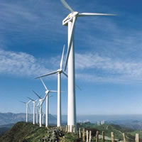 Wind farms can generate much power but threaten birds and bats