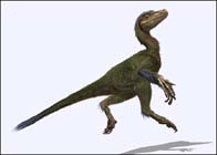New species of dinosaur unearthed in Germany