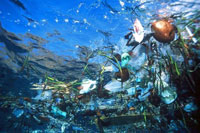 Scientists Find 'Garbage Patch' In Pacific