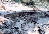 Oil spill source still mysterious in Vietnam