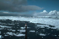 Passenger ship sinks in Antarctic waters