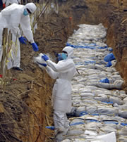 Colombian authorities discover 21 bodies in mass graves