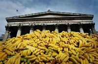 WTO to investigate EU banana rules