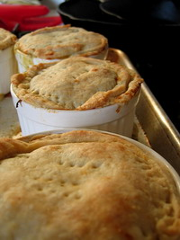 Salmonella cases stop production at pot pie plant