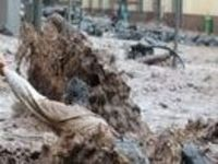 Madeira: Portuguese Island Suffers Worst Catastrophe in 100 Years