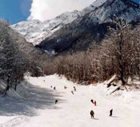 Sochi to compete for hosting 2014 Winter Olympics