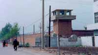 Some 120 North Koreans escape political prison camp
