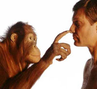 The Half-Truths of Evolution