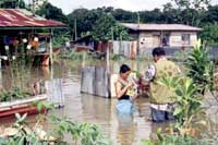 Malaysia's worst flood in 100 years destroys over 60,000 homes