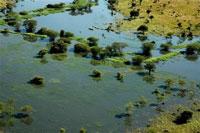 Massive flood causes state of emergency in Uganda