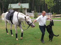 Putin and the animals