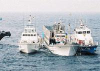 South Korean navy rescues 5 North Koreans fishermen drifting for 27 days