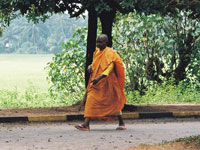Myanmar's military search for Buddhist monks