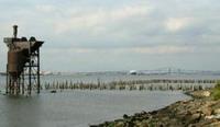 3 vessels collide in Newark Bay