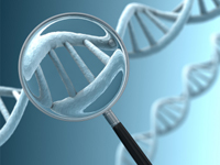 Advance in Study of Alzheimer's Disease Emerging