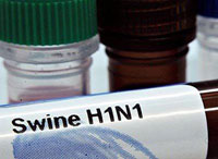 US Need 600 Million Swine Flu Vaccine Doses
