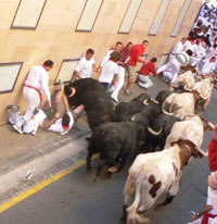 Man takes his ten-year-old son to running with bulls festival in Spain