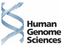 Human Genome Sciences Lacks Research Work