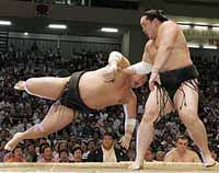 Sumo's top star grapples with match-fixing scandal