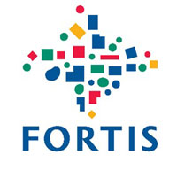 Belgian Fortis to charge off around EUR 2 billion