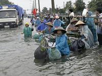 Storm Mirinae Rages in Vietnam