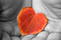 Do you think romance is different in autumn? Test it