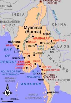 Bird flu strain reported in Myanmar