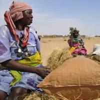 Darfur villagers tell horrifying stories to UN