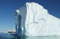 Icebergs turn out to be hotspots of life in cold southern ocean