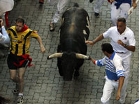 Traditional Pamplona bull runner gored to death