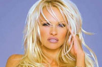 Pamela Anderson Writes Another Letter to 'Dear Prime Minister Putin'