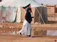 Western Sahara: 23 years on, where is the Referendum?. 52639.jpeg
