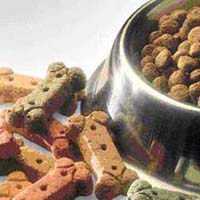 Pet food may develop deadly diseases in cats and dogs