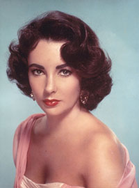 US court refuse to consider case involving actress Elizabeth Taylor and Vincent van Gogh painting