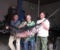 Russian fisherman catches giant tropical swordfish in northern sea