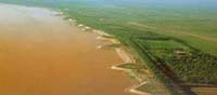 Section of China's Yellow River turns red, smelly from sewage pipe discharge