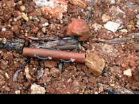 Virginia Tech shooting stimulates bomb threats