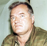 Mladic costs EUR1 million
