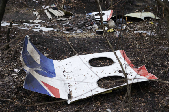 Dutch activists ask Donald Trump to reinvestigation MH17 crash over Ukraine. 59706.jpeg
